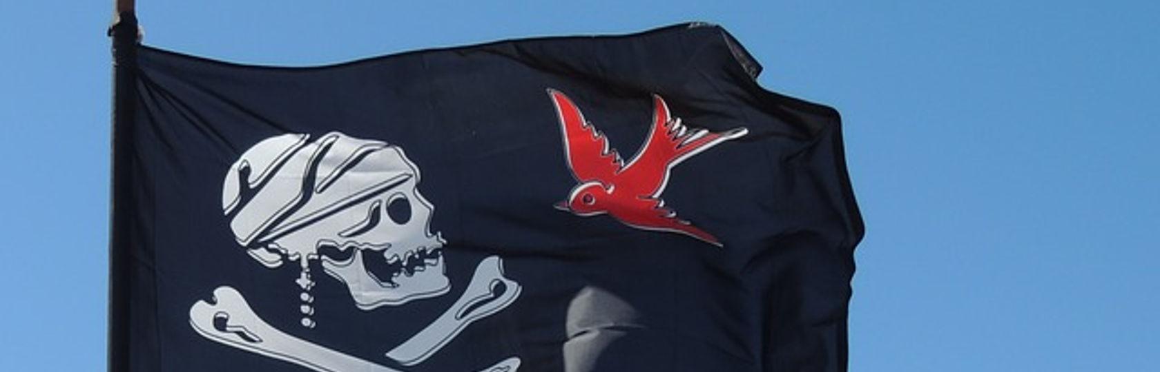 Arrr Paul Mccartney Ist Pirat